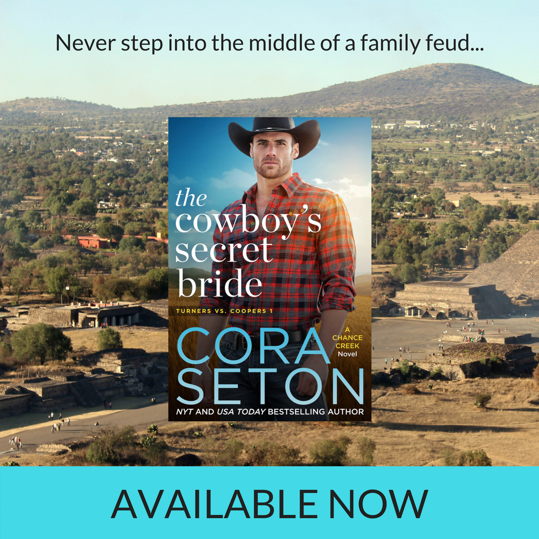 Release Day! THE COWBOY'S SECRET BRIDE Is Out Now